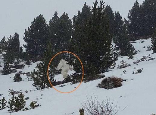 El Yeti visto en los Pirineos protagonista de la noche del misterio